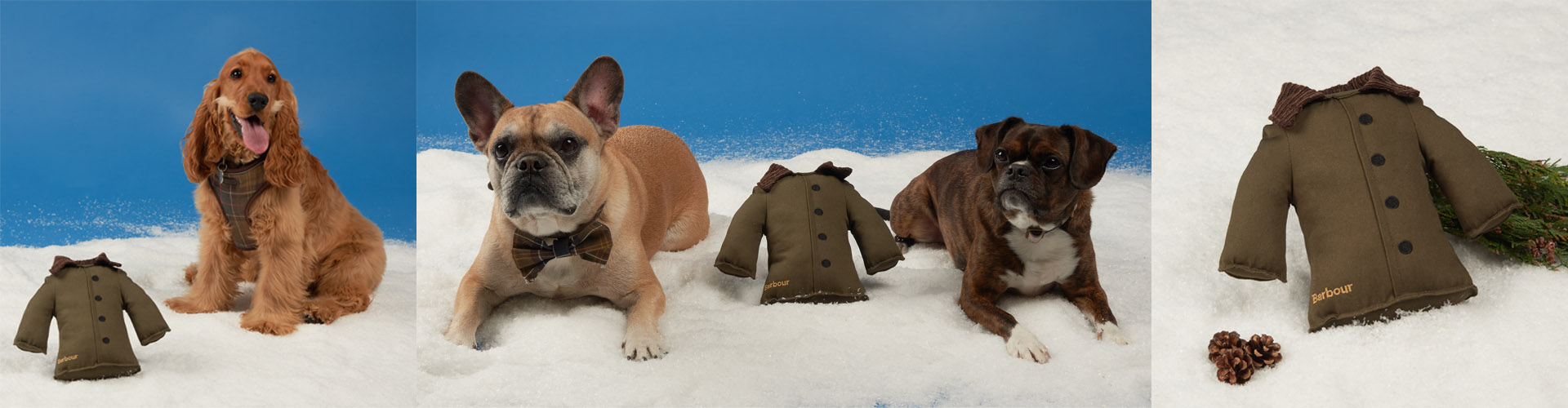 Barbour Dogs Christmas Competition