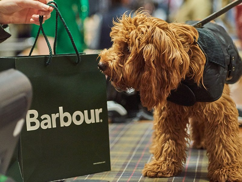barbour dog leash