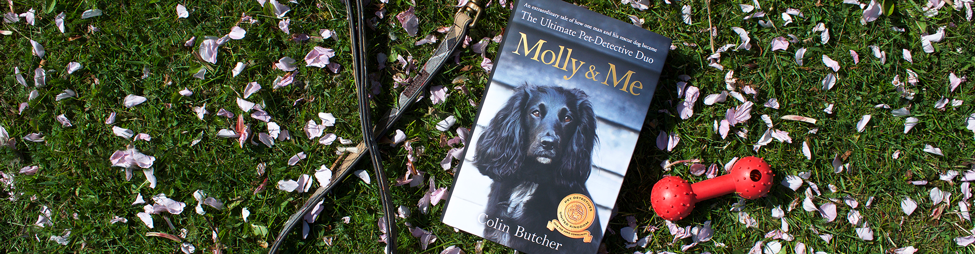 Win a Signed Copy of Molly and Me by Colin Butcher
