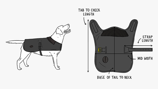 dog jacket diagram