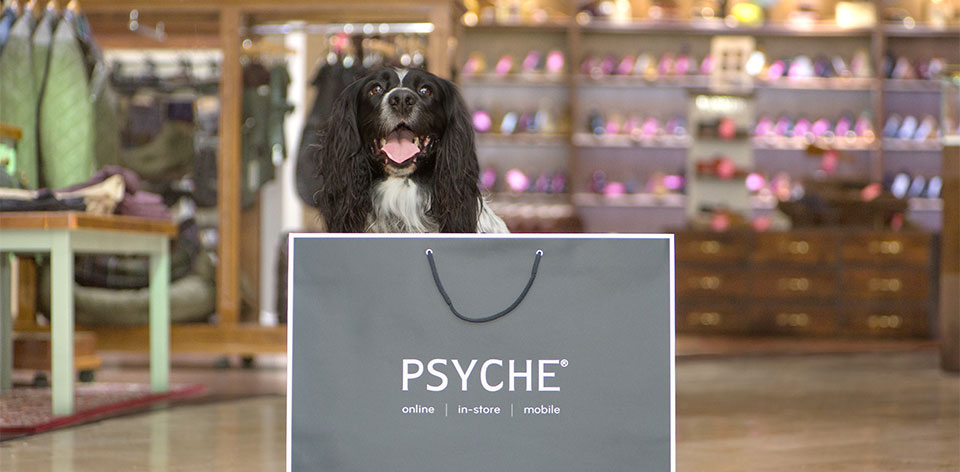 BarbourDogs: Meet The Dogs of Psyche
