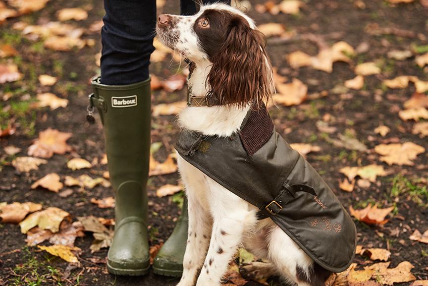 Barbour Battersea Wax Dog Coat