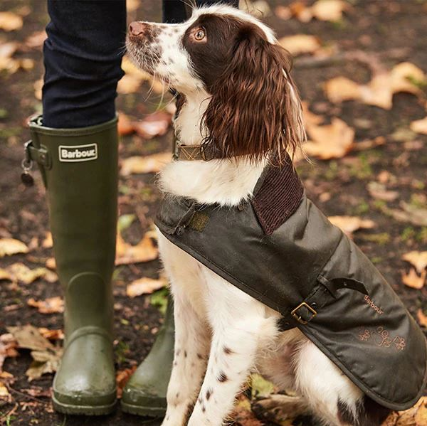 Background image for Barbour X Battersea