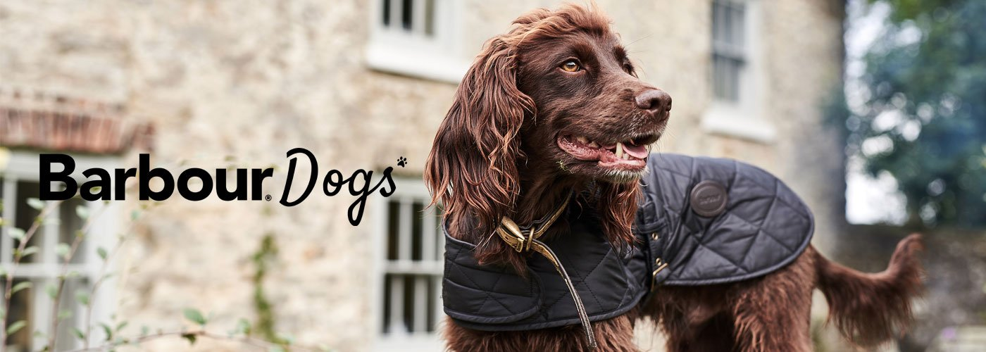 dogs banner